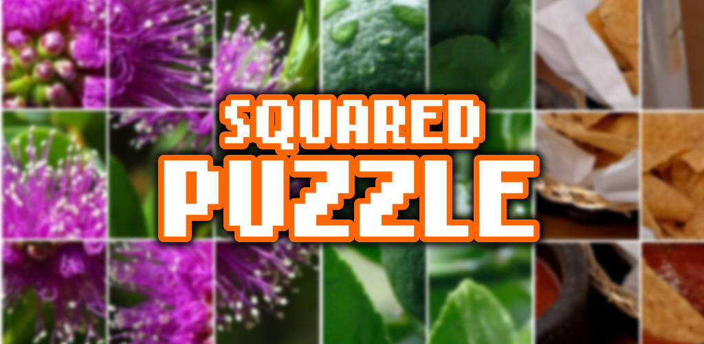 squaredpuzzle_features_1024_500